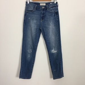 PacSun High Waisted Skinny Straight Jeans